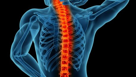 spine-surgery1